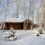отдельный дом на Новый Год