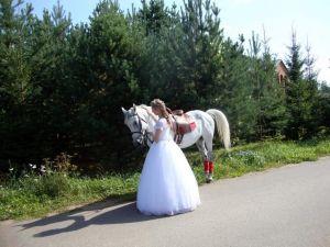Свадьба в Окуловой Заимке10