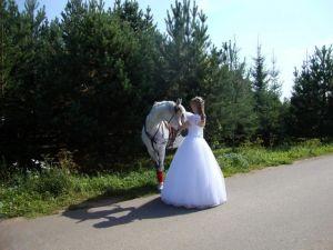 Свадьба в Окуловой Заимке11