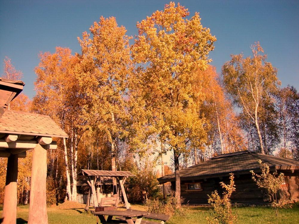 окулова Заимка золотая осень 10