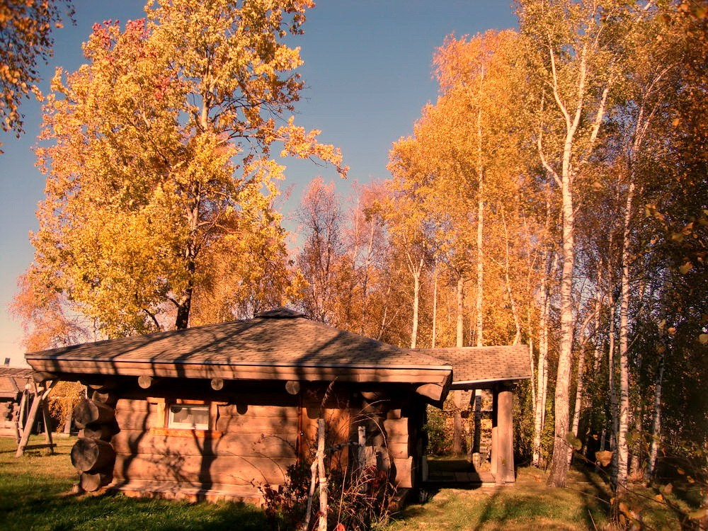окулова Заимка золотая осень 12
