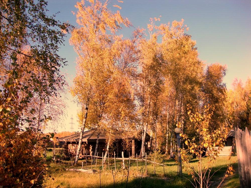 окулова Заимка золотая осень 13