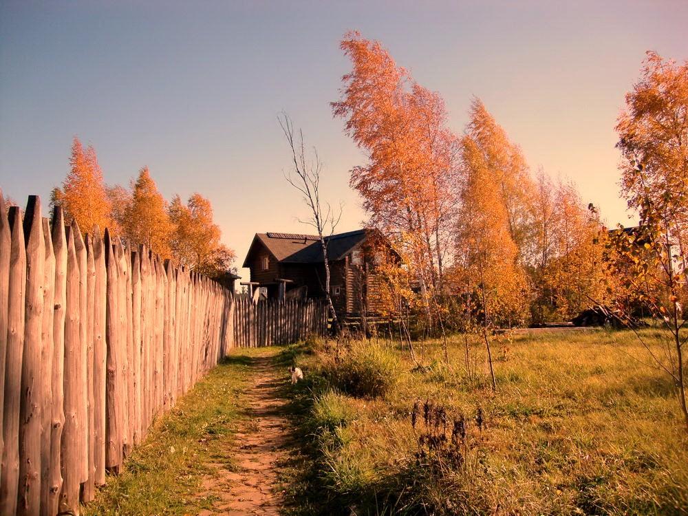 окулова Заимка золотая осень 14
