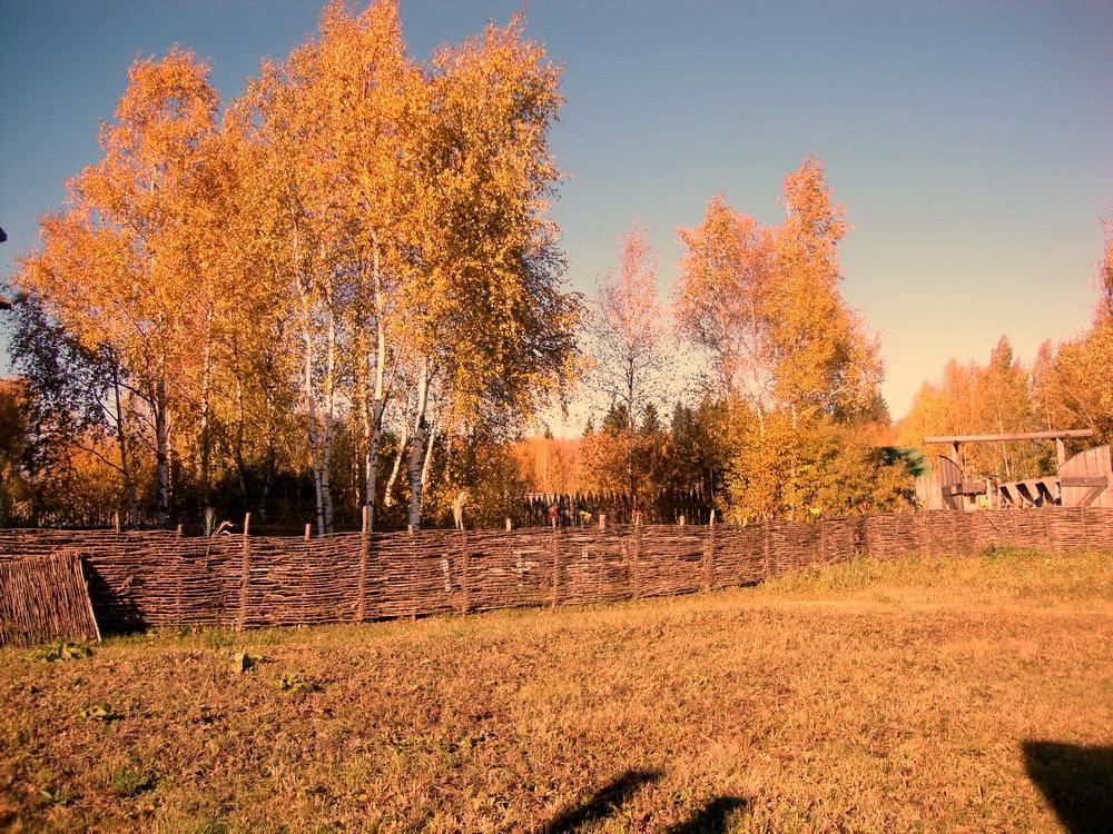окулова Заимка золотая осень 15
