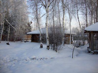 Зимний пейзаж в Окуловой Заимке