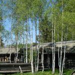 zaimushka.ru деревянная изба