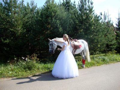 Свадьба в Окуловой Заимке Истра