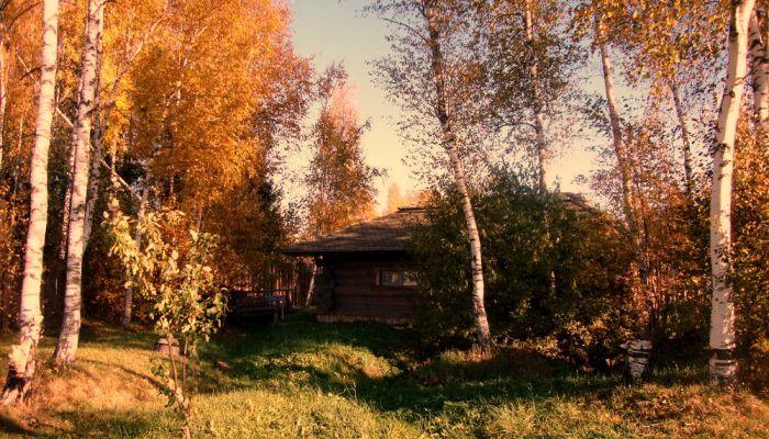 окулова Заимка золотая осень 7