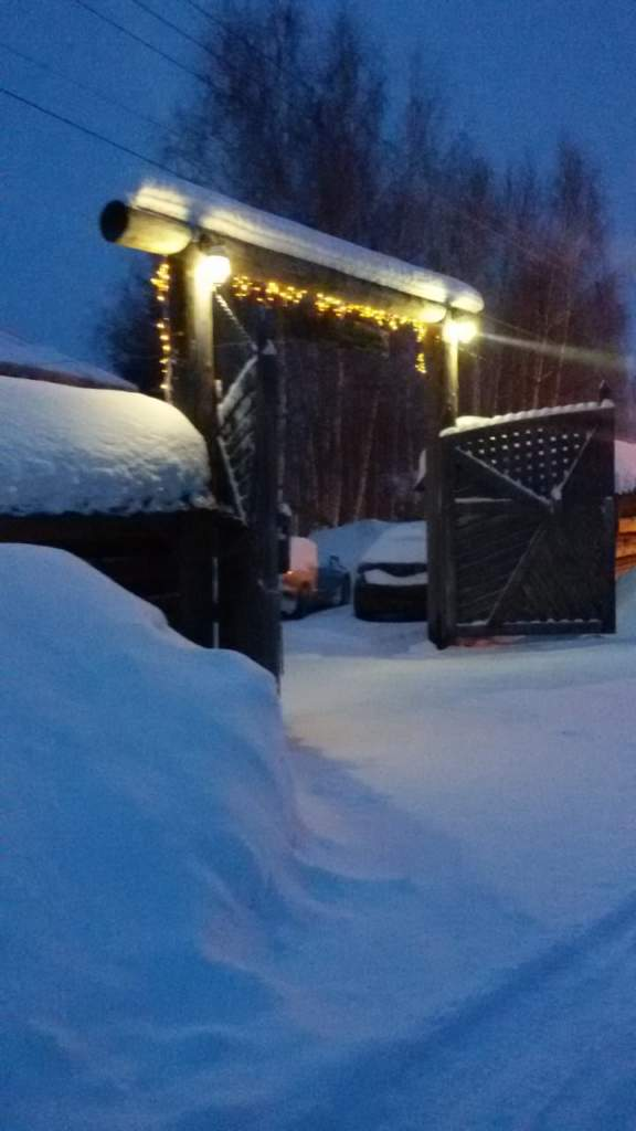 Зима ворота